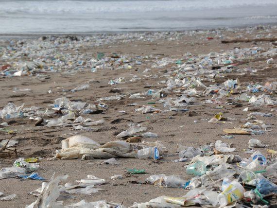 ReplacePlastic App – Digitaler Widerstand gegen den Kunststoffmüll (und gegen die Hersteller von Kunststoffverpackungen)