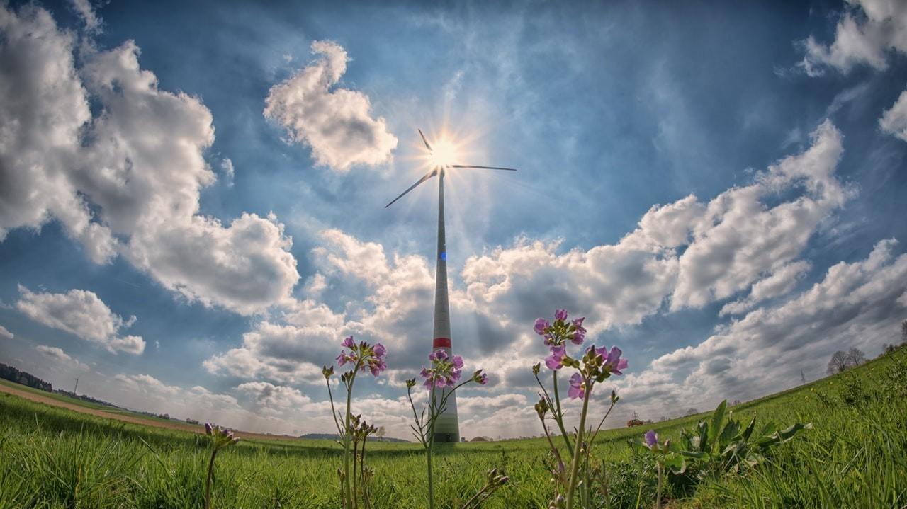 Ökologische Nachhaltigkeit Ja - aber was ist das Ziel